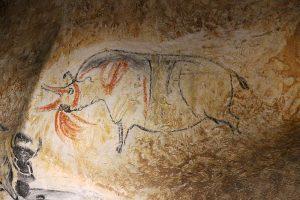 Rhinocéros : exemple d'art pariétal sur une paroi de la grotte Chauvet